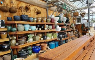 Shelved Plant Pots