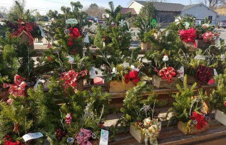Christmas Planters Display